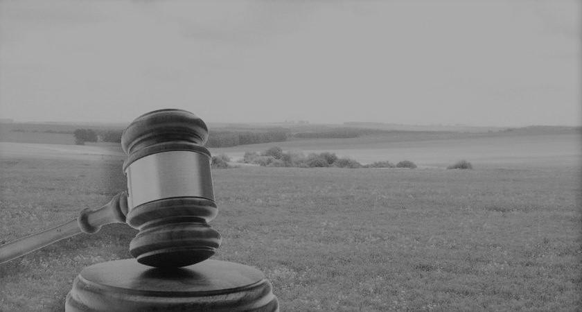 Споры об устранении кадастровой ошибки